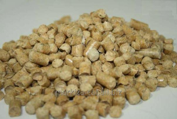 Buy Filler Wood (granules from coniferous breeds of a tree)