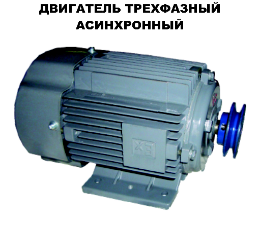 Двигатель техфазный асинхронный Шельф 100