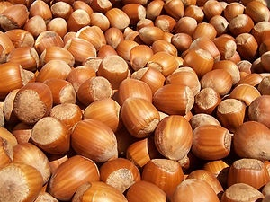 Купить Фундук орех