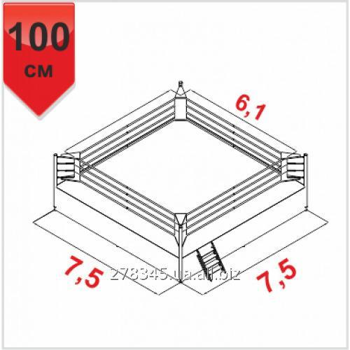 Boxing ring of boyko professional scaffold 75kh75kh1m ropes 6 boxing ring of boyko professional scaffold 75kh75kh1m ropes 61kh61m ccuart Images