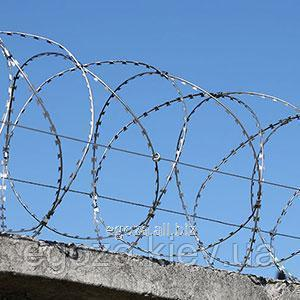 Buy Gyurza 450/3 spiral barbed wire