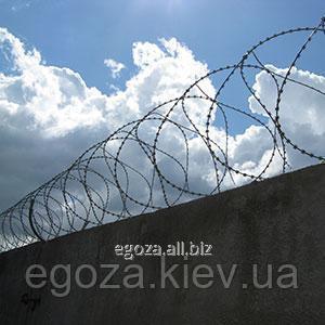 Купить Егоза Кайман 450/5 ЗКР-С