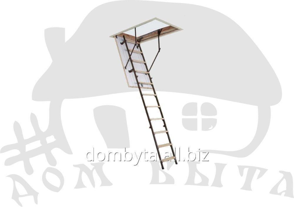 Купить Лестница на чердак Stallux 3