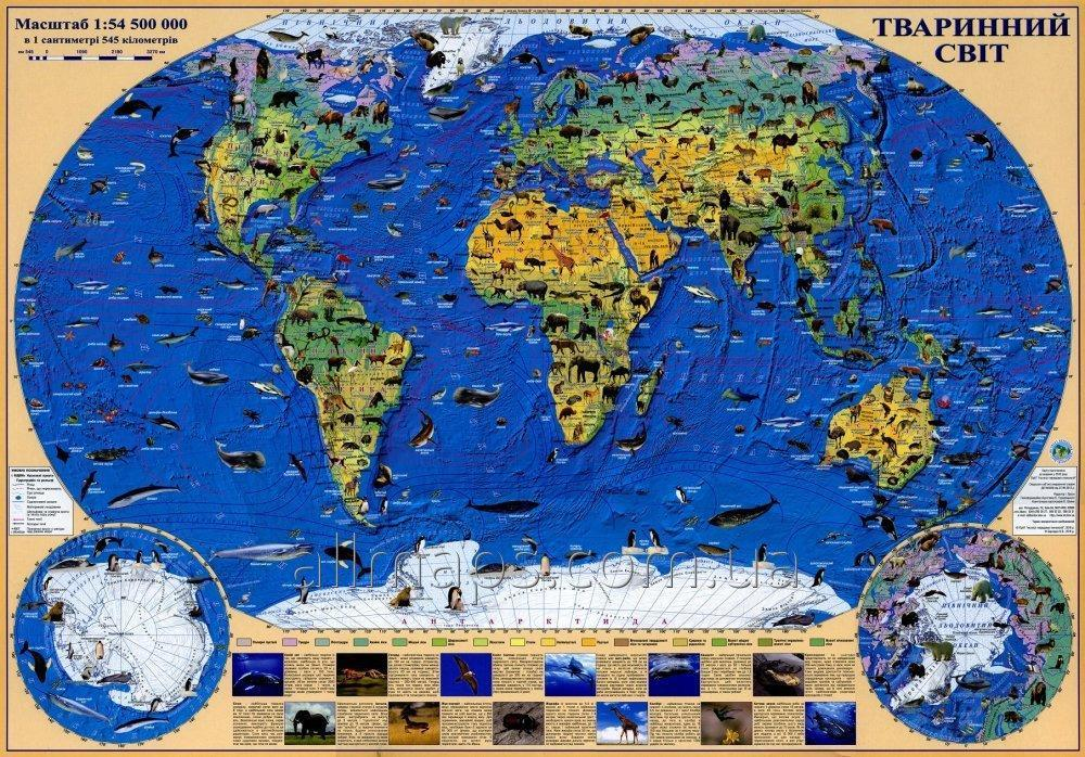 Карта животных мира 65х45 см - ламинированная