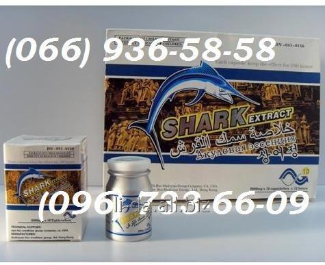 Акулий хрящ экстракт (Shark Extract) - 10шт. Таблетки для повышения потенции