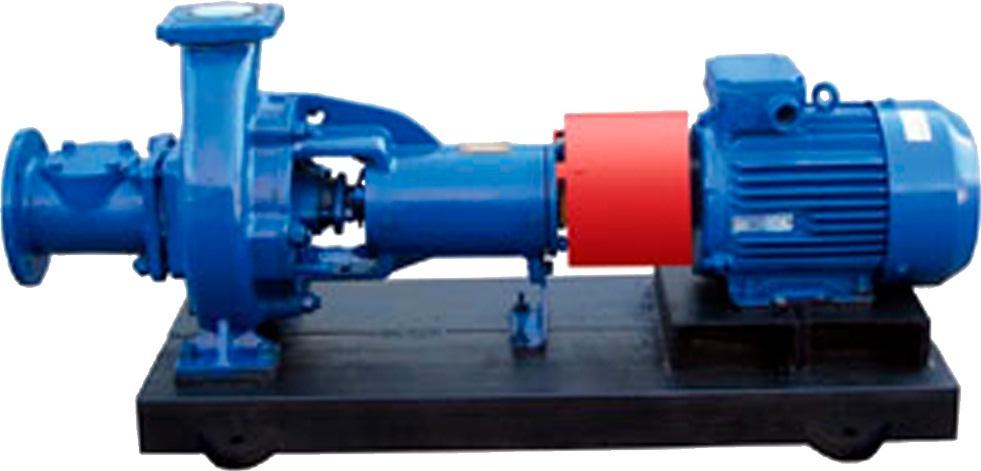 kaufen Pumpe 100-65-200/2A zu sehen