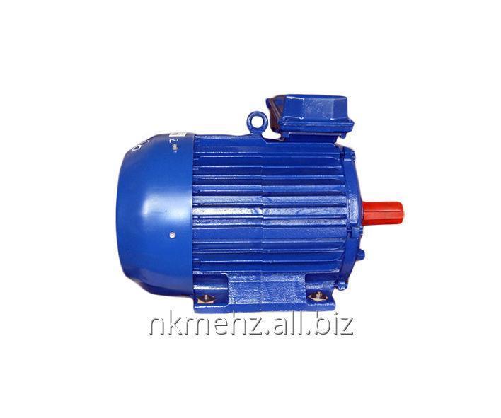 Купить Электродвигатель частотно-регулируемый 6АМУ100-315 РП