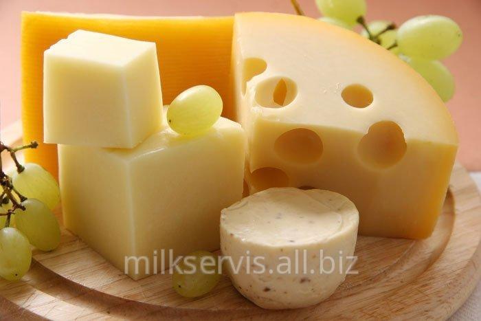 Закваска для сыра Пропионик (PROPIONICI )