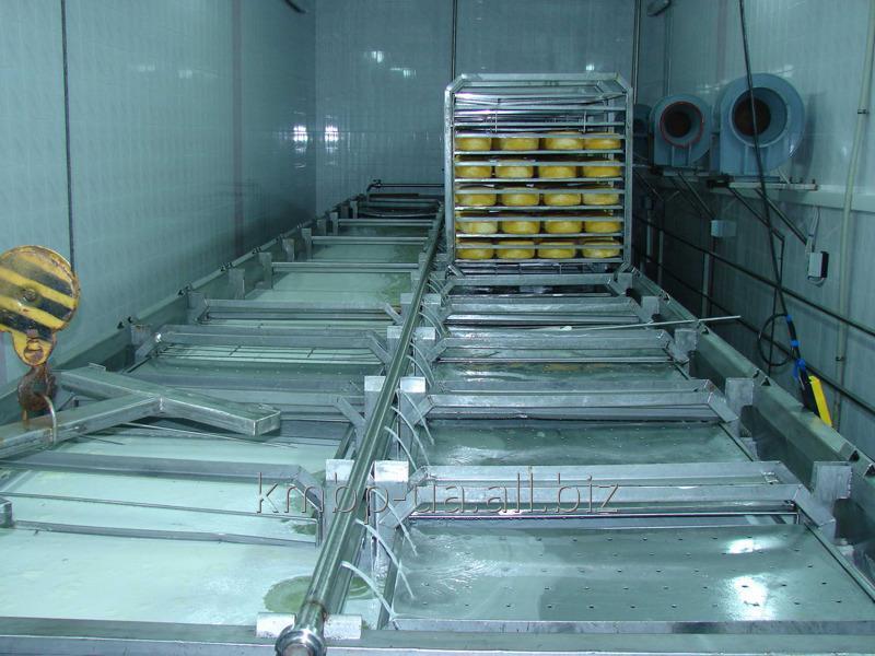 Купить Линия для фасовки и упаковки сухих молочных продуктов