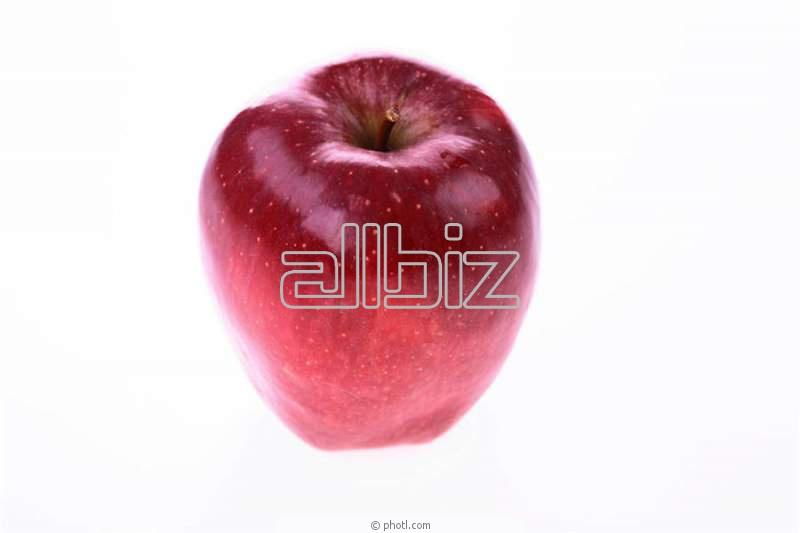 Купить Яблоки свежие