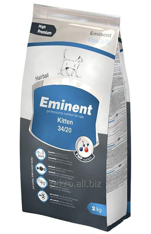 Buy Forage for cats of Eminent Kitten