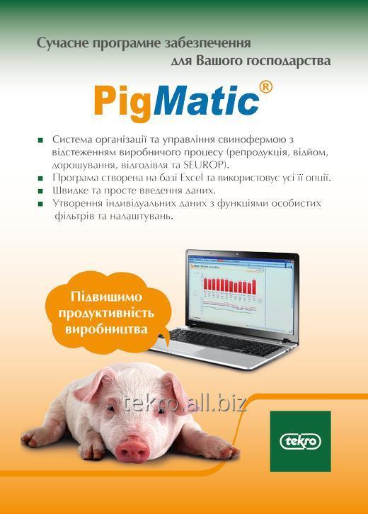 Купить Программное обеспечение Pigmatic