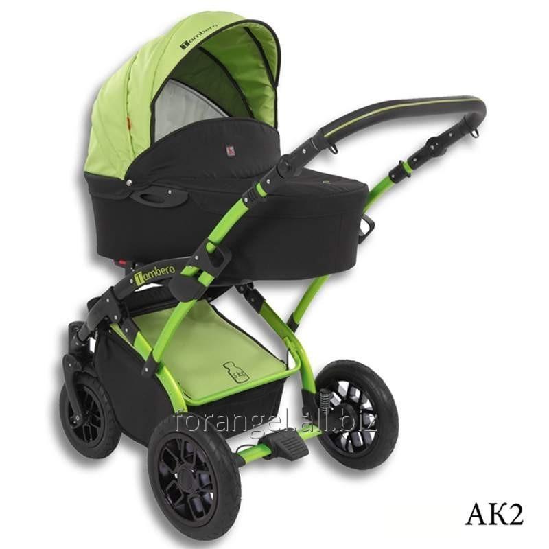 Купить Детская коляска 2 в 1 Tutek Tambero Color 02
