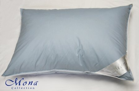 Acheter Down-plume oreiller 50x70 (30% vers le bas)