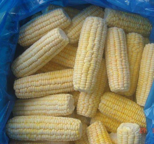 Купить Кукуруза замороженная в початках