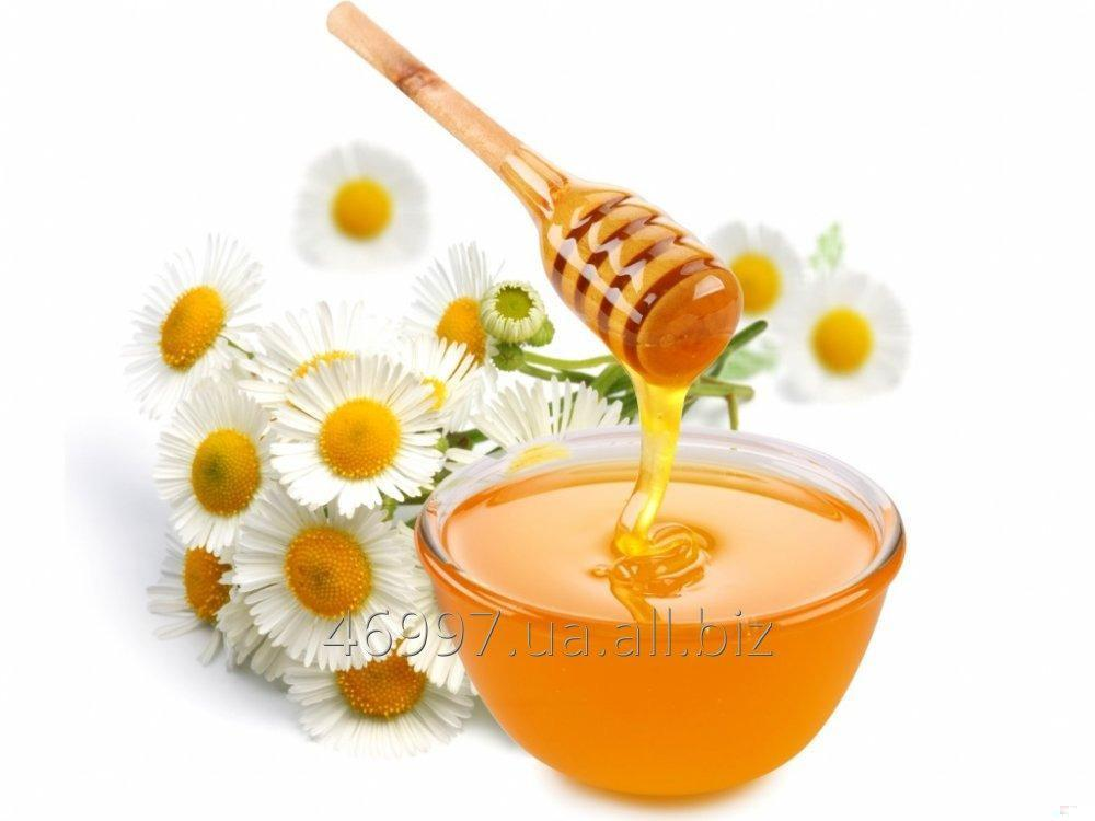 Buy Honey flower