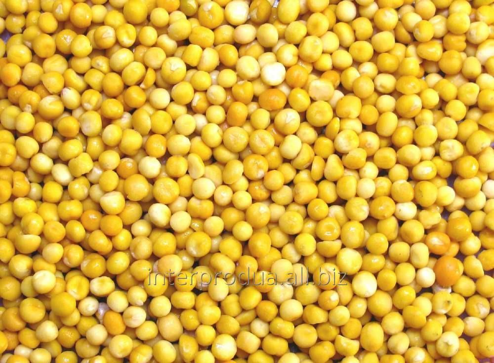 Купить Горох желтый целый и колотый