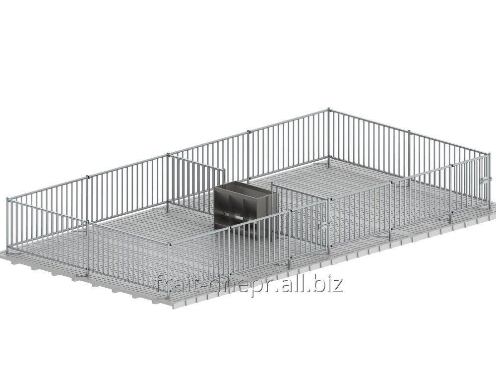 Buy Cage for sagination from a metal protection