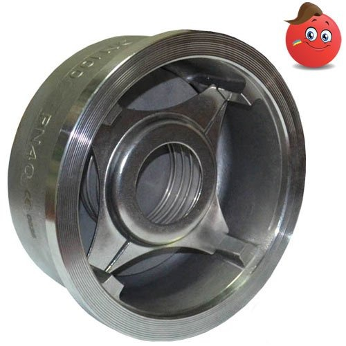 Buy The backpressure valve type 656 sprung by IVR corrosion-proof AISI of 316 Du 125