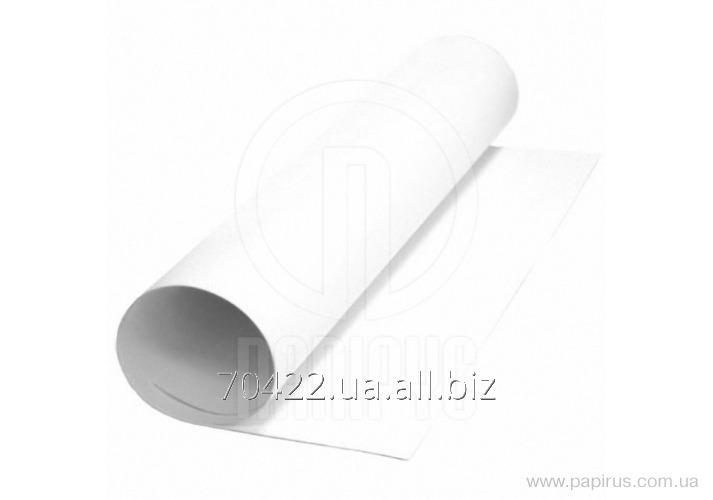 Paper whatman