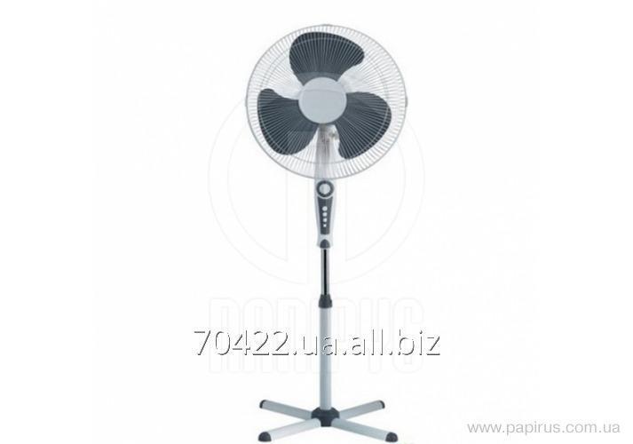 Buy The SB fan is floor