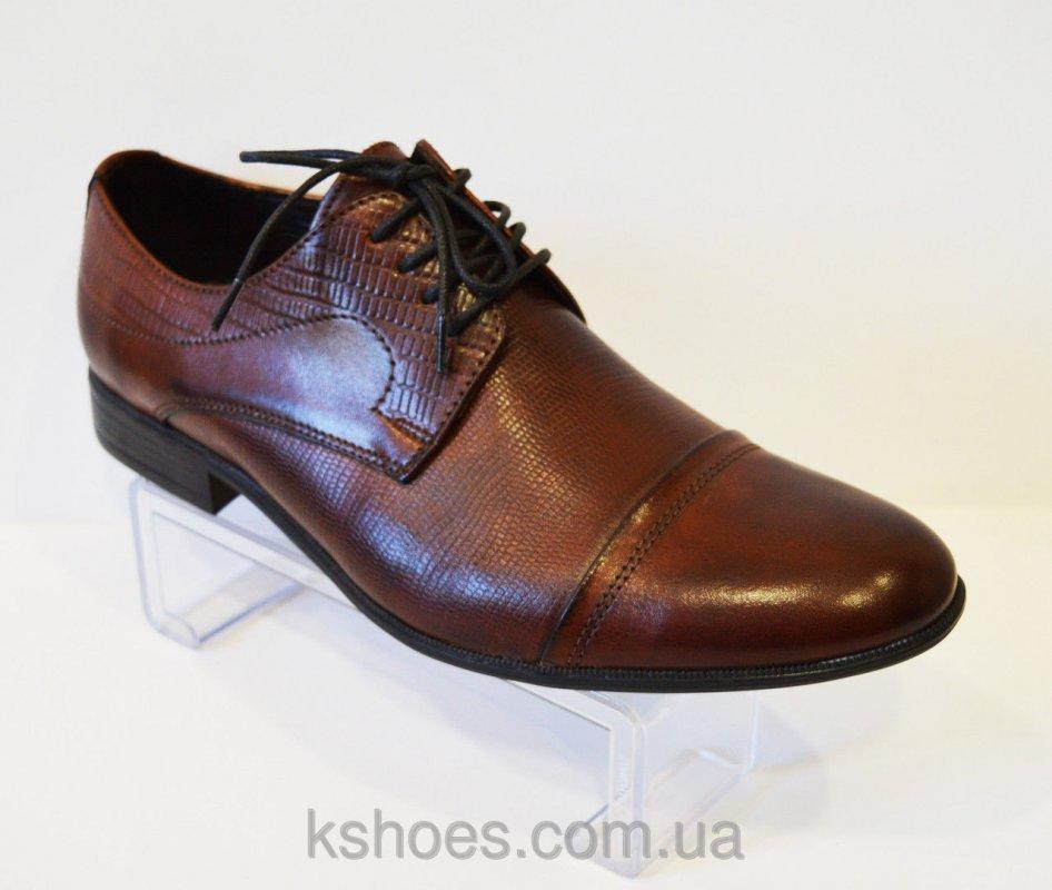 Купить Коричневые мужские туфли Tapi 4233