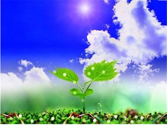 Buy Growth regulators of plants. To buy growth regulators of plants