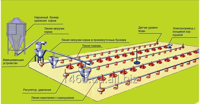 Купить Оборудование для напольного выращивания бройлеров