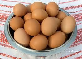 Купить Яйца домашней птицы