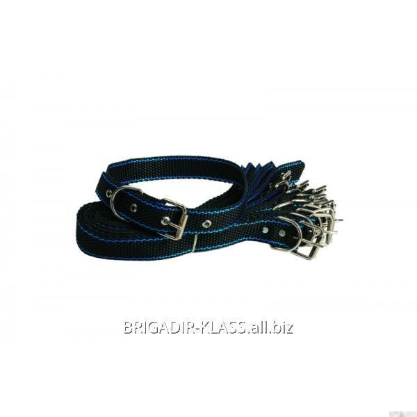Ошейник из синтетической ленты (20мм) ,Модель  ОШ-001