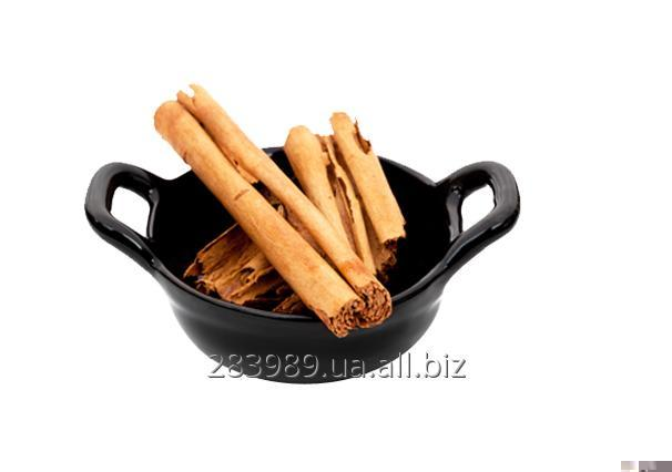 Buy Cinnamon