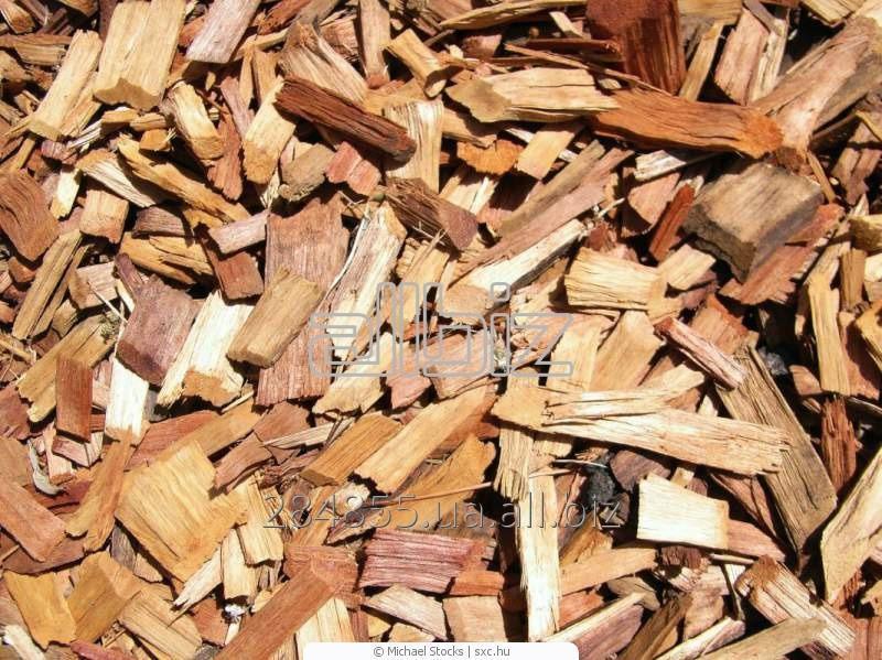 Купить Щепа древесная, Украина