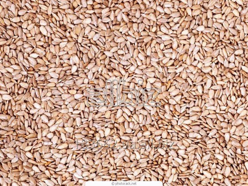 Купить Ядро семян подсолнечника сырое в Украине