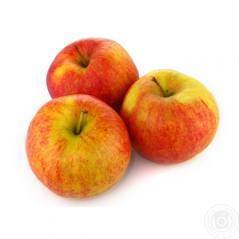"""Купить Яблука сорту """"Джонаголд"""""""