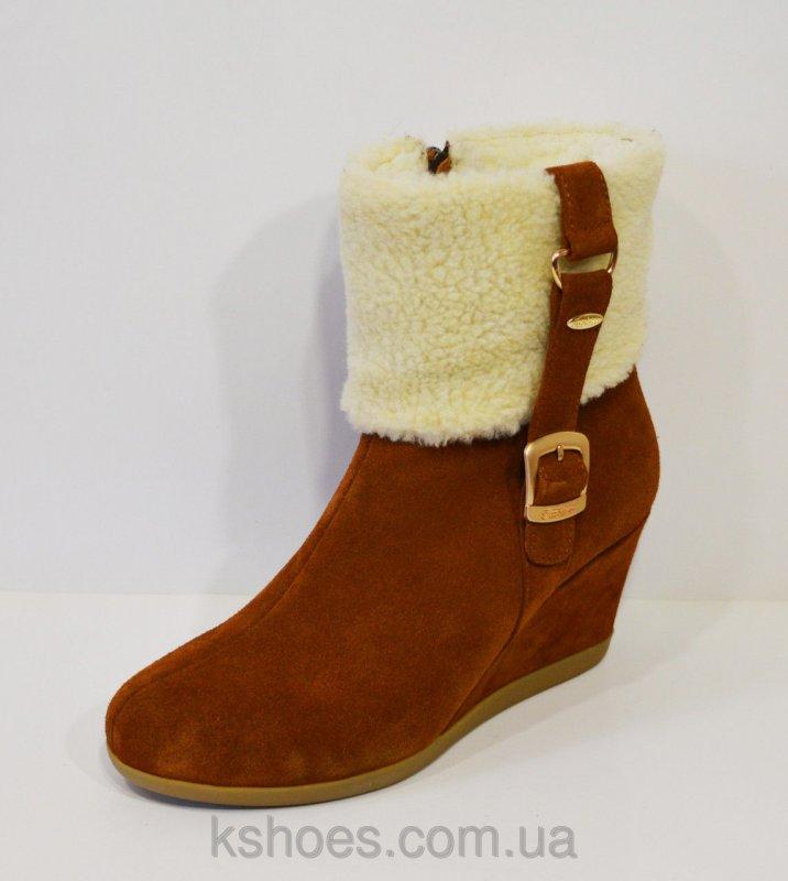 Купить Женские коричневые ботинки Kluchini 2065 432249478