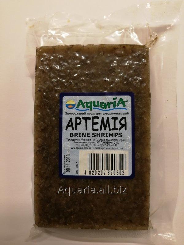 Buy Artemy