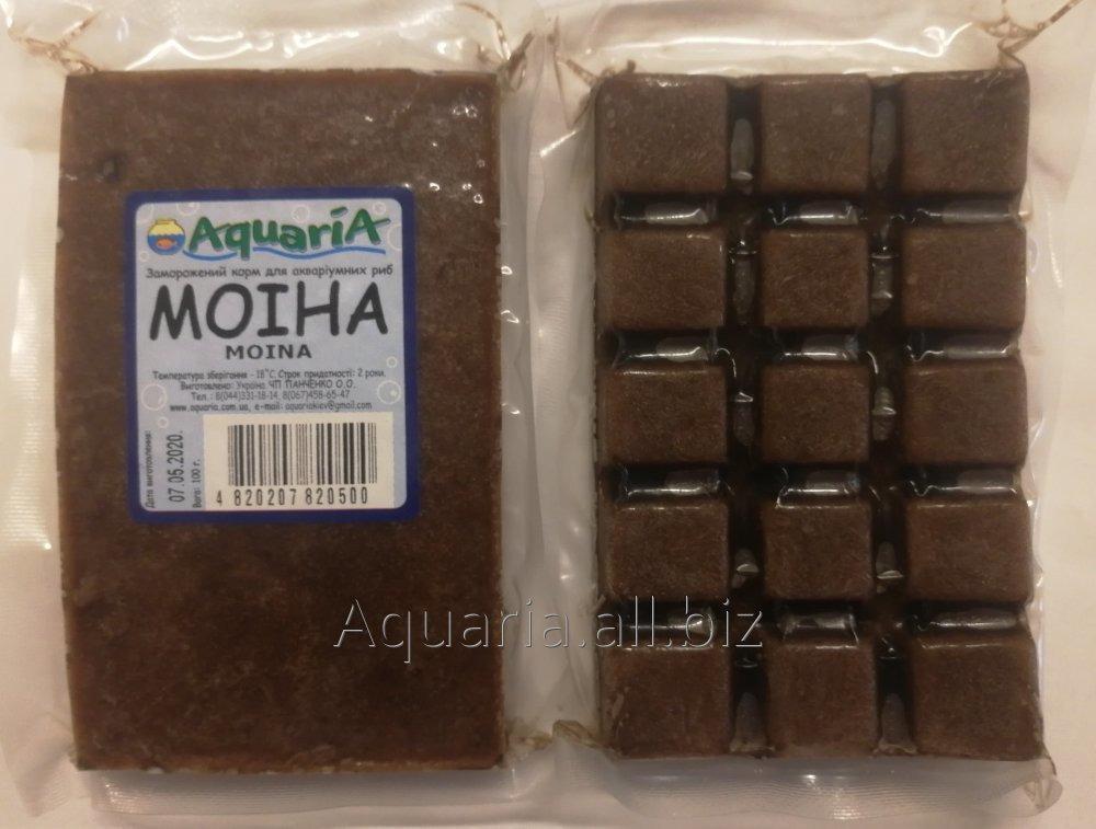 Купить Замороженный корм для рыб Моина. Вакуум упаковка.
