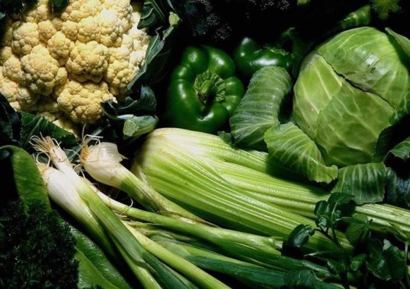 Купить Семена зеленых овощей
