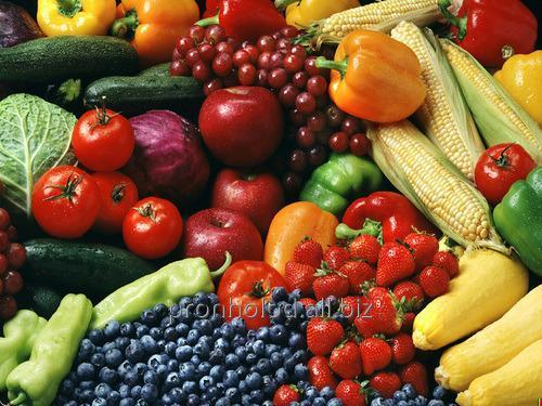 Программа мониторинга и управления процессом хранения овощной
