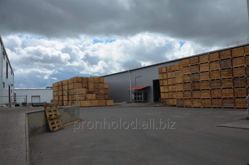Turnkey vegetable storehouses