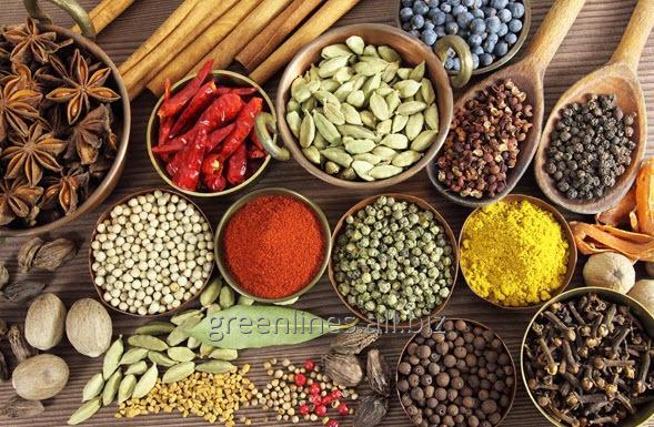 """Buy Functional mix """"Ultra-combi» № 5303 flavoring water-holding, Spicy recipe №2"""