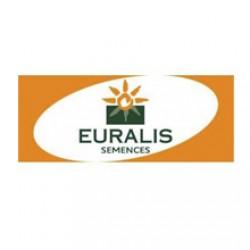 Купить Петуния семена подсолнечник Евралис