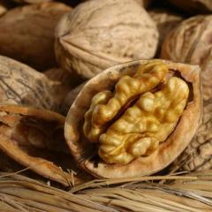Грецкий  орех калибра 28+