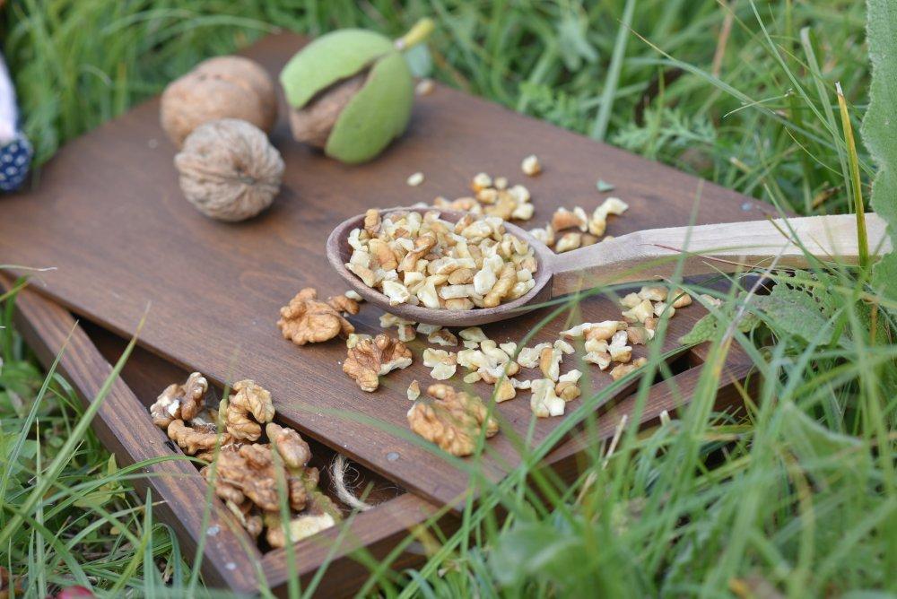 Kärnor från nötter