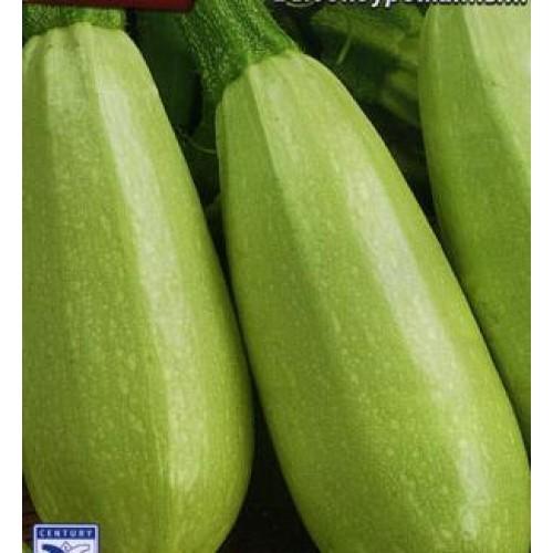 Купить Семена кабачка Грибовский