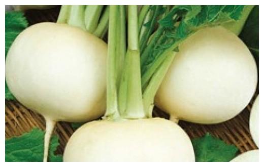 Купить Семена редьки Белая летняя