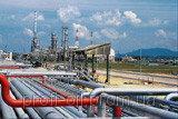 Buy IGNE-68 oil
