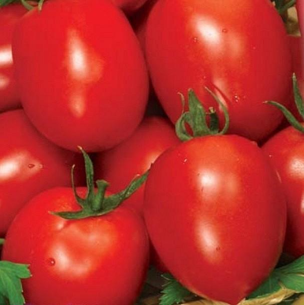 Семена томата Рио Фуего