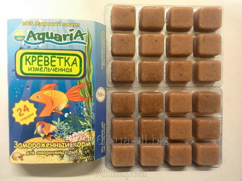 Buy The frozen forage for aquarian fishes the Shrimp crushed