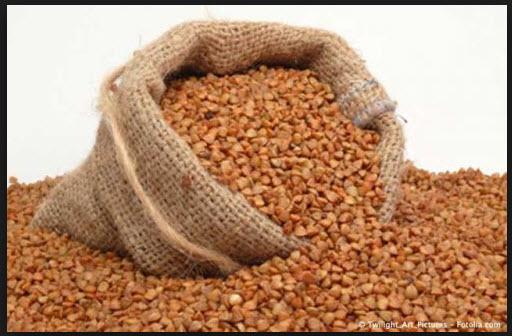 Купить Семена гречки